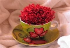 Sfocatura di una coccola (PennadiFata.it) Tags: home caff tazza coccole sfocata sfocatura