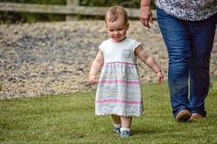 Walking With Grandma (Nikki & Tom) Tags: uk grandma liz girl toddler child sophie tynewear