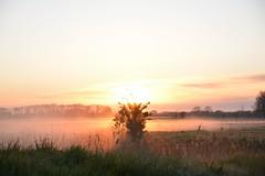 opkomende zon met mist (Omroep Zeeland) Tags: mist natuur zeeland zon vlissingen walcheren oostsouburg opkomende
