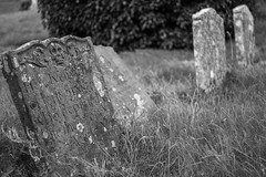 He definitley would have voted Brexit (adamnsinger) Tags: grave graveyard st skull tomb norfolk nicholas tombstones crossbones salthouse brexit