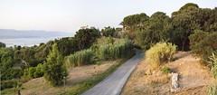 Panorama6_FaroSuperiore_discesa2 (Cristianbe) Tags: blackwhite messina rudere torrefaro messine farosuperiore casamulino