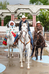 ajbaxter160716-0313 (Calgary Stampede Images) Tags: canada alberta calgarystampede 2016 allanbaxter ajbaxter