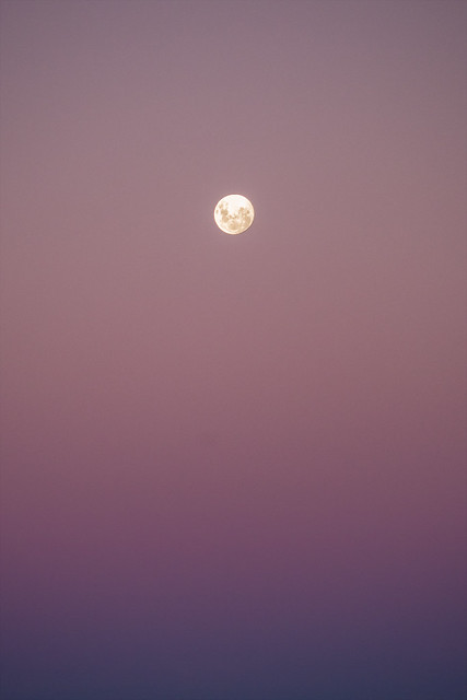Moon at Twilight