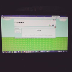 Tänään CWINFO:n sivuille uusi kirjautuminen työn aiheena ja tulevan viikon aikana verkkokauppa Queenbee Inkille