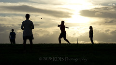 Beach Cricket 17 (ArdieBeaPhotography) Tags: girls sunset playing beach boys silhouette youth ball children bat young running cricket nz bowling scouts batting kiwi wicket