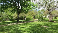 Sounds of Belmont May 20, 2016 (Christopher Grande) Tags: nature ma pond belmont 2016