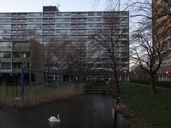 IMG_0807 (Momo1435) Tags: netherlands den nederland rijn aan alphen