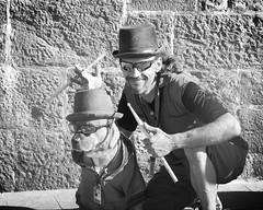 le drummer et son chien... (mariej55quebec) Tags: people blackandwhite bw musician music white man black nature animal artist noir noiretblanc crowd foule animaux blanc homme gens musique artistes vieuxqubec spectacle jongleur musicien acrobates bte artistesderue amuseurs