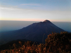 "Pengembaraan Sakuntala ank 26 Merbabu & Merapi 2014 • <a style=""font-size:0.8em;"" href=""http://www.flickr.com/photos/24767572@N00/27067823182/"" target=""_blank"">View on Flickr</a>"