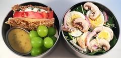 Tomato Sandwich Bento (Cathryn3) Tags: mushroom tomato lunch salad egg sandwich grapes bento parmesan spinach redonion provolone honeymustard honeywheat