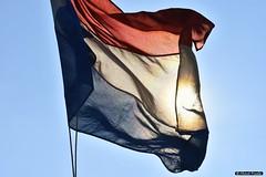 2016-03 Je zou de vlag uitsteken als het mooi weer is (Oostvoorne/NL) (Meteo Hellevoetsluis) Tags: holland netherlands museum flag nederland nl agenda oostvoorne zon maasvlakte meteo specials maart zuidholland vlag regionaal 0313 2016 voorne futureland voorneputten collecties nikond7200 mnd03 lenteseizoen