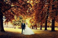 Ein schnes Hochzeitsbild am Schloss monrepos :) mehr auf http://ift.tt/1lX56G6 #hochzeitsfotograf #hochzeitsfotografie #stuttgart #mnchen #Frankfurt #Hochzeit #Fotograf #Luxus #instapic #wedding (hochzeitsfotograf.stuttgart) Tags: wedding photoshop photography groom bride couple fotograf photographer hochzeit lightroom weddingphotographer braut brutigam hochzeitsbilder brautpaar hochzeitsfotografie hochzeitsfotograf