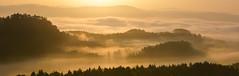 Light through fog in the Saxony Swiss (Explore) (Philipp Zieger) Tags: panorama sun nature fog sunrise germany deutschland spring nebel pano sony natur landschaft sonne sonnenaufgang wandern frhling schsischeschweiz elbsandsteingebirge erlebnis saxonyswitzerland drausen a6000 groserbrenstein