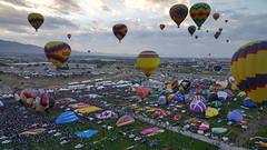Up, up & away!  International Balloon Fiesta in Albuquerque, NM