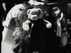 """El peregrino...."" (Ilargia64) Tags: bear street travel blackandwhite cute monochrome teddy traveller teddybear cuteness pilgrim caminodesantiago peregrino mochila littlebear amayasnchez"
