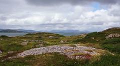 Connemara Tr Dillon (Leo Bissett) Tags: ireland mountain west galway beach field grass rock stone landscape dunes remote burren rugged connemarajuly2016anspidealbearnafurbo