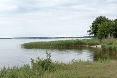 """Usedom, Halbinsel Gnitz: Blick vom Mwenort ber das Achterwasser - Looking over the Achterwasser lagoon at Mwenort (""""Gulls' Place""""), a small strip of land protruding from the Pensinsula of Gnitz. Behind the lagoon appears the continent. (riesebusch) Tags: usedom halbinselgnitz"""