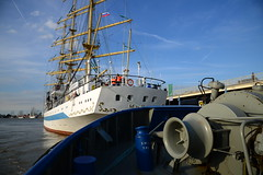 Tall Ship's Race 2016 Mir DST_4552 (larry_antwerp) Tags: fairplayiii antwerptowage mir antwerp antwerpen       port        belgium belgi          schip ship vessel        schelde        tallshipsrace