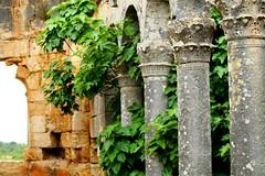 Exploring in Turkey (sydneykmking) Tags: life travel love nature beautiful architecture turkey ruins outdoor christian adventure pillars turkei