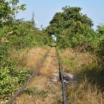 Long Empty Rail Tracks in Green Vegetation 2 thumbnail