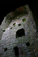 Castle Face (Evil Cheese Scientist) Tags: castle scotland july hermitage borders 2016 mccastleface