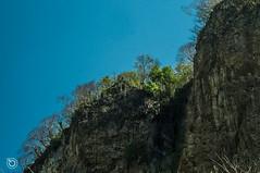 DSC03235 (Braulio Gmez) Tags: barrancadehuentitn biodiversidad caminoamascuala canyon canyonhuentitan faunayflora floresyplantas guadalajara guardianesdelabarranca huentitn ixtlahuacandelro jalisco mountainrange mxico naturaleza paisaje senderismo sierra barrancadehuentitn barranca huentitn ixtlahuacandelro mxico