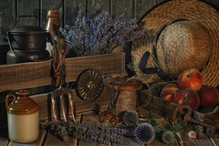 The Long Lazy Days of Summer. (memoryweaver) Tags: eryngiums milkchurn strawhat mellow vintage reel bobbin string stilllife peaches crate golden memoryweaver warmtones sunset provenal lavender