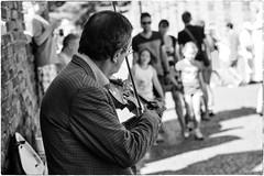 Street artist (Roberto Spagnoli) Tags: fotografiadistrada streetphotography artistadistrada art streetartist violin music musician violinist people strada street biancoenero blackandwhite 50mmcanon