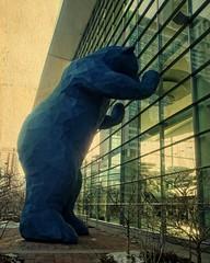 Denver Convention Center Bear Explore March 14th (DASEye) Tags: bear sculpture texture colorado olympus denver textures denverconventioncenter davidadamson daseye