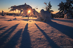 Casting shadows (Magnus Emln) Tags: blue winter sunset sky sun sunlight snow ski cold nature yellow pine sunrise canon landscape snowflakes early intense ray skiing shadows sweden magic lappland north sunny swedish arctic clear silence serenity lapland snowshoeing birch rays snowshoes magnus sunray snowcovered norrland dnow gllivare northernsweden norrbotten koskullskulle tjautjas emln