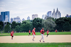 "Baseball frenzy in Central Park @ NYC • <a style=""font-size:0.8em;"" href=""http://www.flickr.com/photos/8364105@N02/16317623684/"" target=""_blank"">View on Flickr</a>"