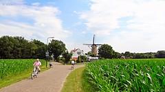 Typical Dutch landscape... Soest, Netherlands - 2571