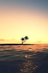 Photo (realzil) Tags: ocean travel light sunset red sea summer vacation sky orange cloud sun beach nature water beautiful sunshine yellow sunrise relax landscape dawn coast landscapes waves natural dusk background horizon palm tropical