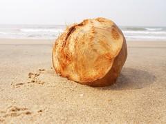 Coconut on beach side (iDapinder) Tags: sea macro beach coconut
