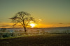 (Adelino Goncalves) Tags: winter light sunset england sky sun cold color nature beautiful field rural forest landscape golden evening landscapes countryside nikon glow dusk earth dean perspectives peaceful gloucestershire edge rays fx forestofdean nikond800 ericgoncalves nikonafs50mmf18