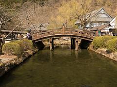 P1550525.jpg (Rambalac) Tags: fish water animals japan pond asia nikko животные вода пруд рыба tochigiken nikkōshi япония азия никко lumixgh4