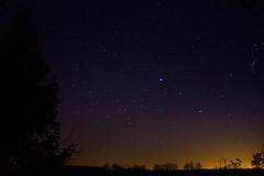 IMG_2929 (jacksainsbury) Tags: trees silhouette night stars countryside nightsky