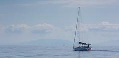In the Mediterranean Sea near Elba Island (Oleg.A) Tags: sea italy elba italia it tuscany toscana mediterraneansea isoladelba riomarina