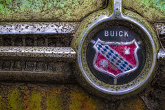 Old Buick (Mark Chandler Photography) Tags: auto white color colour classic cars ford chevrolet car rural truck canon ga vintage emblem georgia photography photo buick woods junk rust automobile antique stock chevy chrome 7d trucks junkyard hoodornament junkyards cadilac oldcarcity markchandler 7dmarkii
