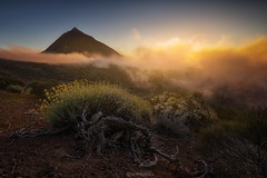 Sea of Clouds (Iván F.) Tags: travel sunset españa mountain tourism clouds landscape atardecer nikon sundown canarias nubes tenerife tamron teide discover lancscapes visitspan