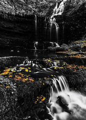 Scaleber Force (Chris Willman - Yorkshire) Tags: autumn waterfalls northyorkshire scaleberforce