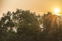 6am Sunrise 13th May 2016 (Carl@CDHPIX) Tags: sunrise earlymorningsun