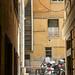Genoa alley