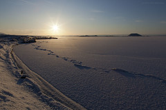Harmonia (ikithule) Tags: sunset lake snow nature landscape iceland lumi maisema luonto jrvi auringonlasku mvatn jannemaikkula ikithule