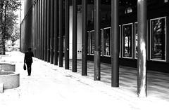 By following columns (pascalcolin1) Tags: blackandwhite noiretblanc columns streetview colonnes photoderue paris5 urbanarte photopascalcolin