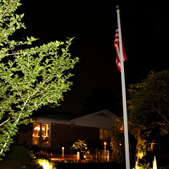 IMG_8652 (jalexartis) Tags: lighting nightphotography night yard dark landscape lights backyard landscaping shrub yucca shrubbery yuccaplant