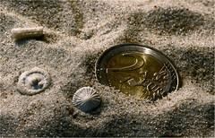 """""""Smaller than a Coin"""" (stine55) Tags: macromonday stine55 smallerthanacoin karinmatz"""
