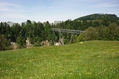 / (plattnerbauten) Tags: bridge switzerland canyon pedestrians brcke appenzell schlucht stahl steelconstruction