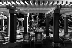 Marriott's Cypress Harbour - Orlando Florida (BDA Rebel) Tags: blackandwhite fountain pool marriott outside villa cypressharbour