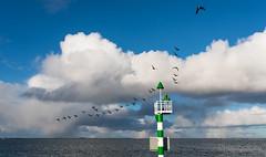 DSC_6869_Lr-edit (Alex-de-Haas) Tags: city haven netherlands clouds port landscape marine cityscape air navy nederland wolken lucht naval stad landschap noordholland denhelder navalbase havenstad marinebasis